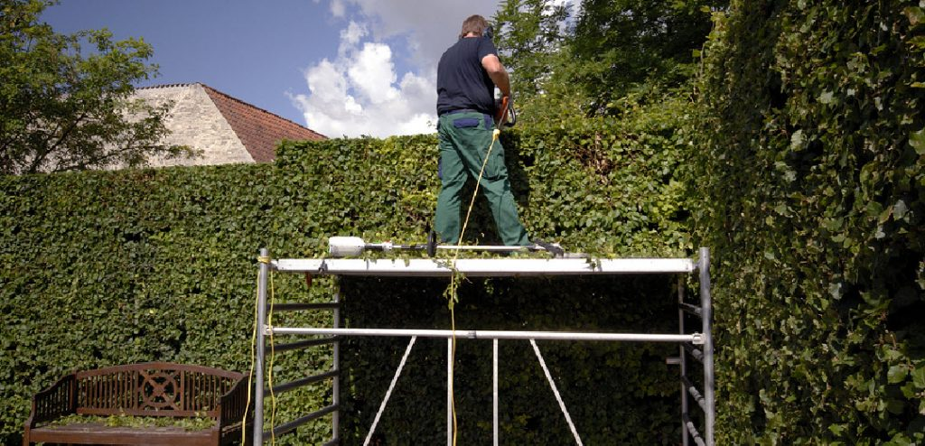 Hedge Cutting and Hedge Trimming West Midlands by Tree Surgeon Solihull