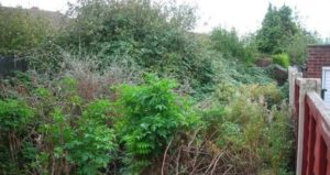 Garden Clearance Solihull by Landscape Gardeners Solihull