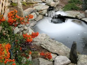 Garden Pond Water Features by Landscape Gardeners Solihull