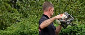 Hedge Trimming and Hedge Cutting Solihull by Solihull Landscaping