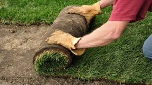Turf Laying and garden edgings by Solihull Landscape Gardeners